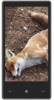 Firefox is dead on Windows Phone 7