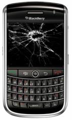 broken_blackberry-180x300