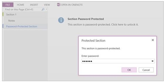OneNote Web App Password Protected