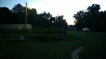 lumia-1020-outside-low-light