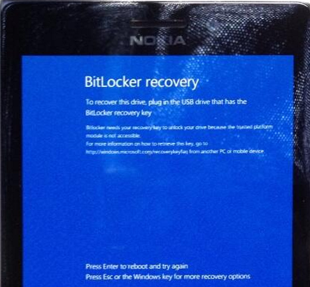 Warning– Do not Install the WP8 1 update if you use