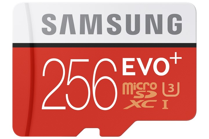 Samsung Evo Plus 256GB SD Card (Small)