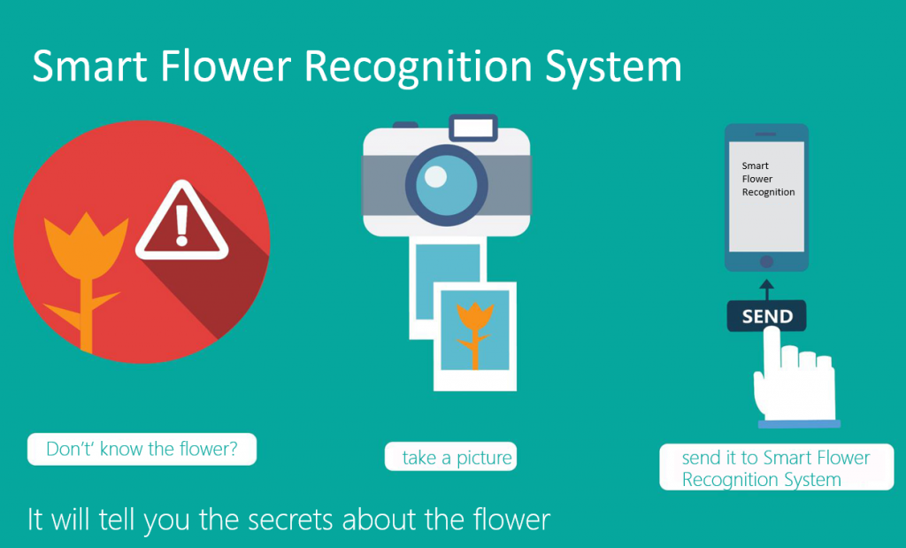 Microsoft Research Flower Recognition