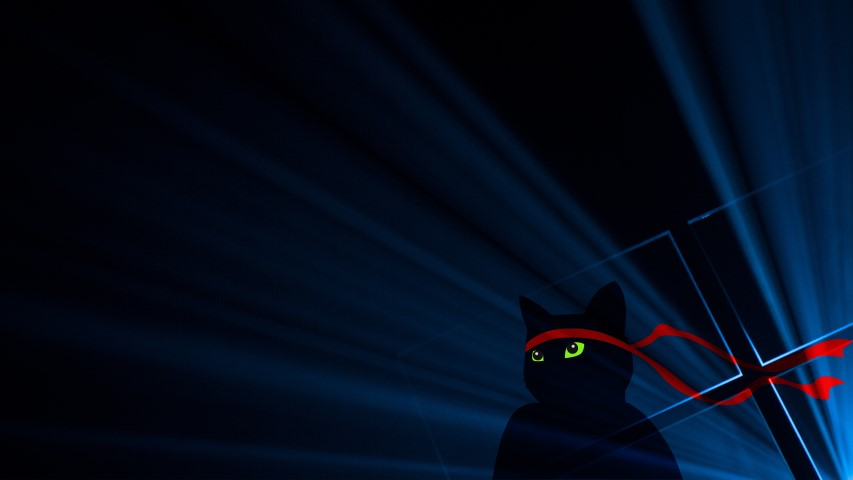 Download The New Ninjacat Windows 10 Wallpapers