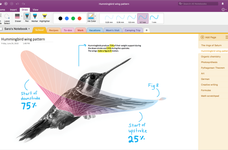 Microsoft announces application-level permissions support for the OneNote API 5
