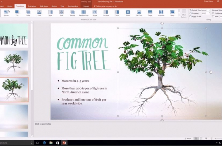 Microsoft announces support for Scalable Vector Graphics (SVGs) in Office apps 20