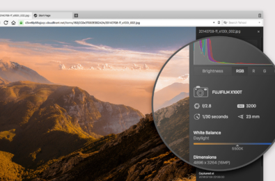 Vivaldi 1.12 update gives you instant access to image properties 10