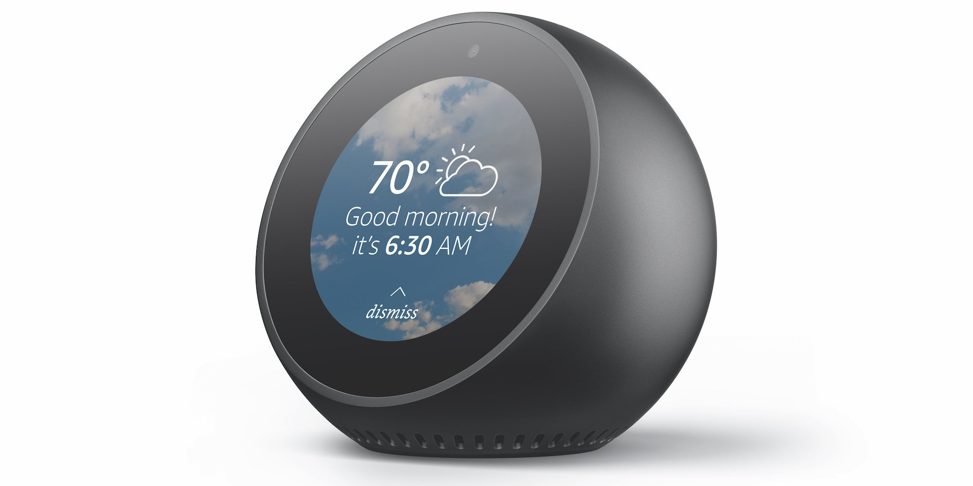 Does Alphabet Inc (GOOGL) Have An Echo Show Killer In the Works?