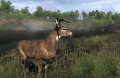 theHunter: Call of the Wild should get an Xbox One X upgrade in the future after backlash 45