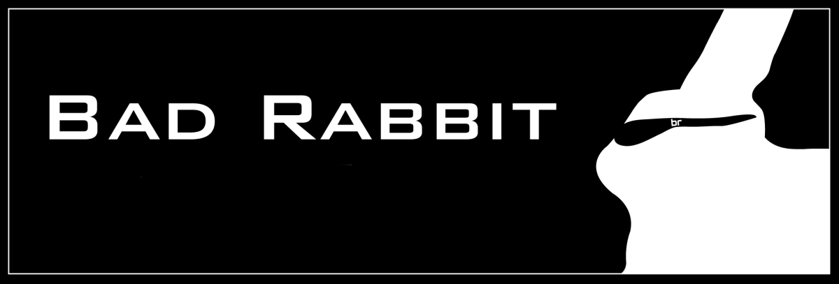Bad Rabbit is the latest ransomware currently ravishing Russian computer networks 1