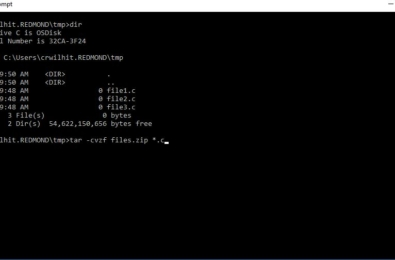 Microsoft adds Tar and Curl Unix shell command line tools to Windows 10 4