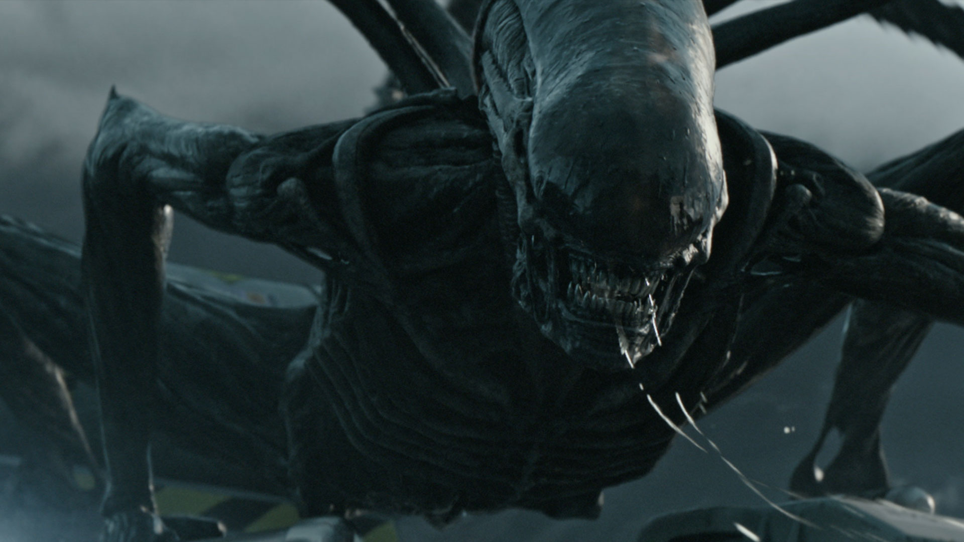 New 'Alien' Shooter In Development From FoxNext