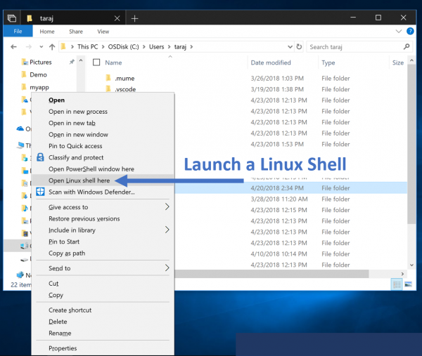 Ubuntu 18 04 LTS makes its way to the Microsoft Store - MSPoweruser