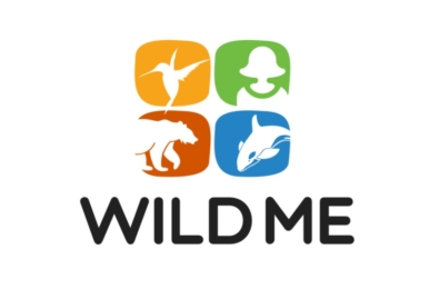 Wild Me joins Microsoft's AI for Earth program 3