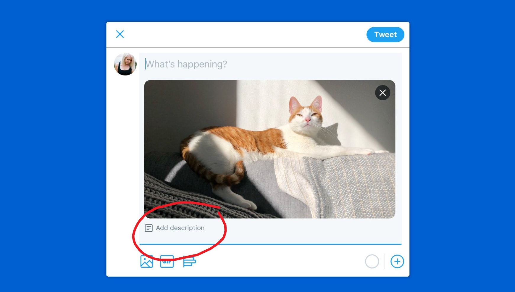 photo image Twitter PWA for Windows 10 to get new accessibility feature