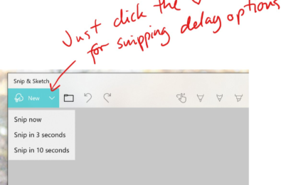 Microsoft adds new features to the Snip and Sketch app in the latest Fast Ring build 14