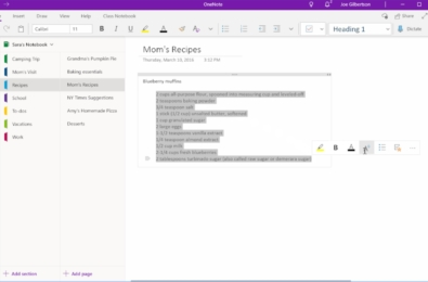 The new Mini toolbar in OneNote for Windows 10 helps you edit content faster 1