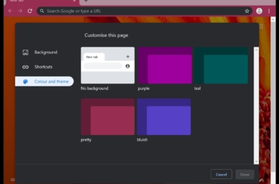 Colours and Theme customization now available in Chrome Canary 22