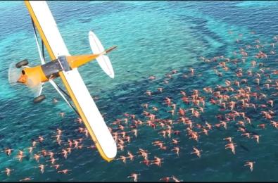 Microsoft Flight Simulator finally returns; looks absolutely stunning 6