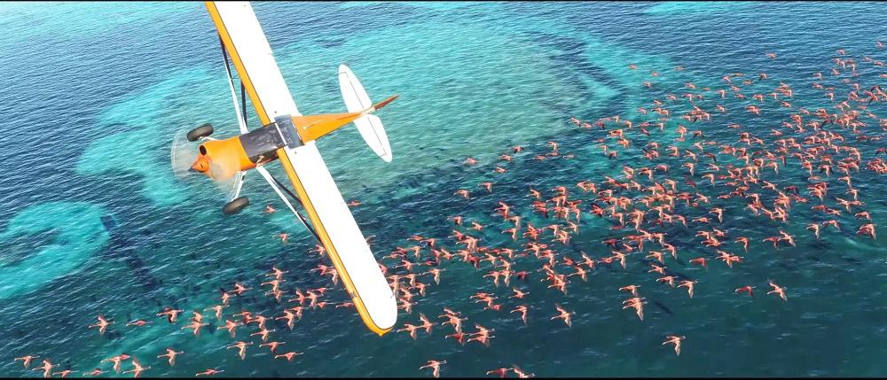 Microsoft Flight Simulator finally returns