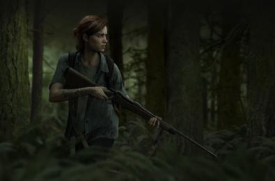 Last of Us 2 install