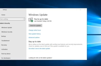 Microsoft confirms the Windows 10 November 2019 update is not the new normal 12