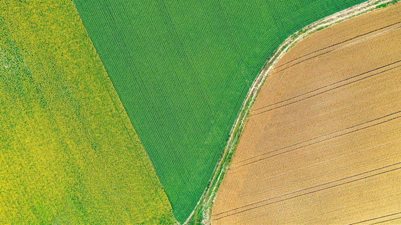 Windows 10 Theme: Microsoft releases 'Aerial Farmland PREMIUM' theme pack 3