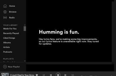 Spotify is bringing song lyrics back to its Windows 10 app 19