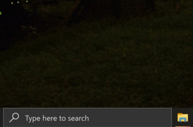 Microsoft Search still coming to the Windows Search Box 3