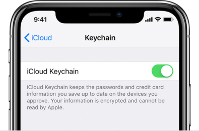 iPhone's password manager to get some iPassword features in iOS14 13