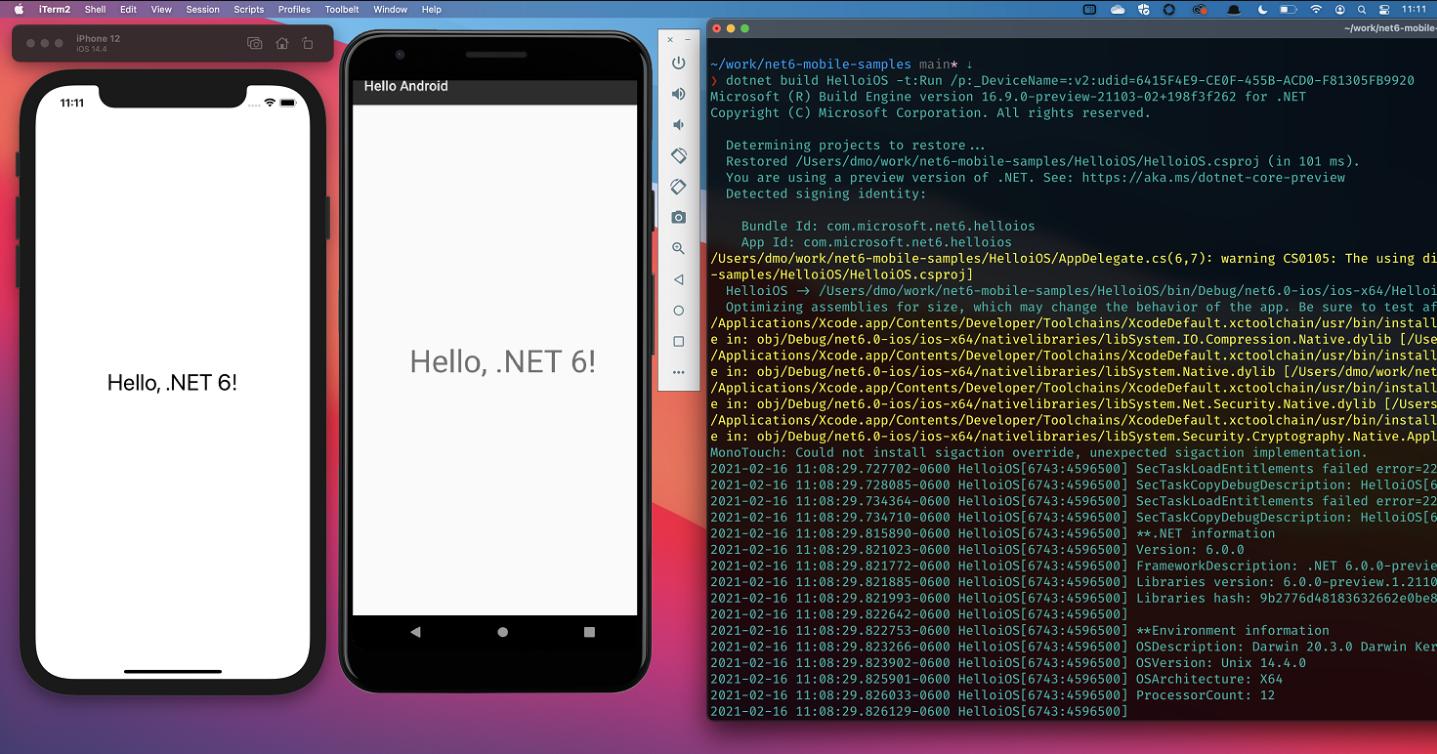 Microsoft .Net 6 Preview 1
