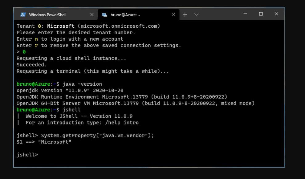 Microsoft Build of OpenJDK