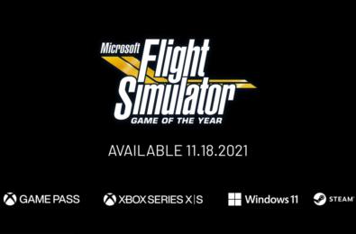 Microsoft Flight Simulator GOTY