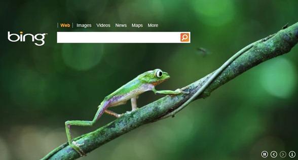 bing australia video homepage