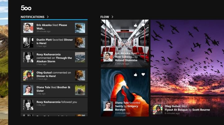 500px Windows Store app