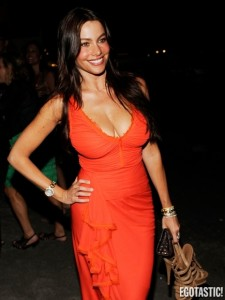 sofia-vergara-birthday-full-of-cleavage