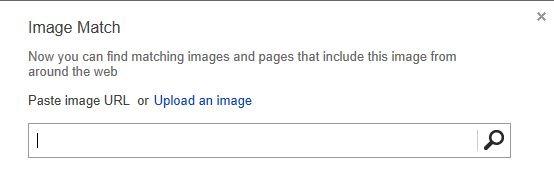 Bing Image Match 1