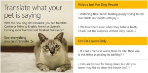 Bing Pet Translator