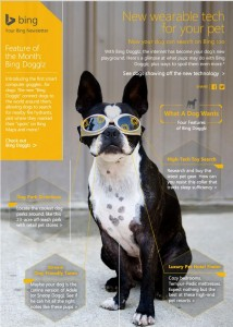 bing dog google glass