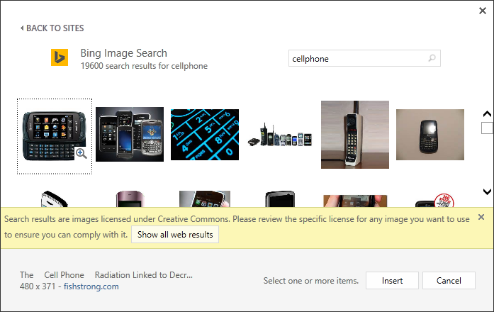 Office Bing Image Search