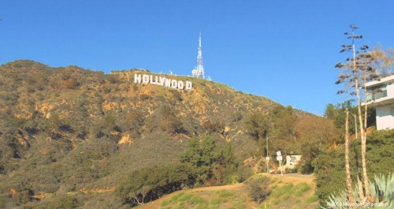 Bing hollywood