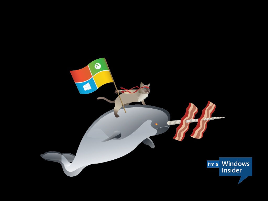 Windows_Insider_Ninjacat_Narwhal-1024x768